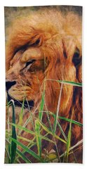 A Lion Portrait Hand Towel