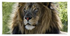 A Lion's Thoughts Hand Towel