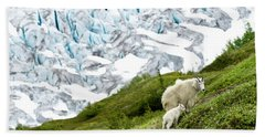 A Mountain Goat And Its Baby Search Bath Towel
