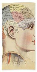 A Phrenological Map Of The Human Brain Hand Towel