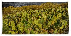 Bath Towel featuring the photograph A Prickly Pear View by Mark Myhaver