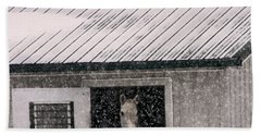 A Snowfall At The Stable Hand Towel