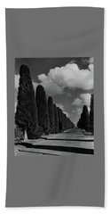 A Street Lined With Cypress Trees Hand Towel