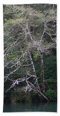 A Tree Along The Oregon Coast Bath Towel by Tom Janca