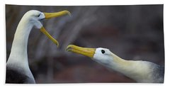 A Wave Albatross Couple In A Courtship Hand Towel