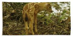 A Young Fawn In The Spring Hand Towel