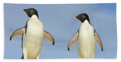 Adelie Penguin Duo Hand Towel