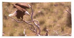 Adult Eagle With Eaglet  Hand Towel