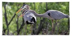 Affectionate Great Blue Heron Mates Hand Towel