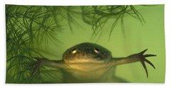 African Clawed Frog Bath Towel