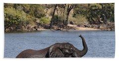 African Elephant In Chobe River  Bath Towel