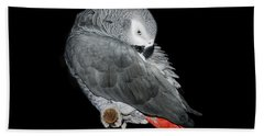 Bath Towel featuring the photograph African Grey Parrot by Betty LaRue