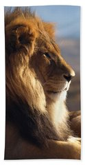 African Lion Hand Towel by James Peterson
