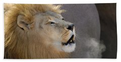African Lion Bath Towel