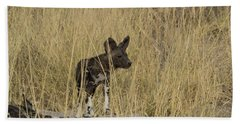 African Wild Dog Lycaon Pictus Puppy Hand Towel