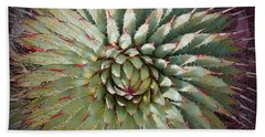 Agave Spikes Hand Towel by Alan Socolik