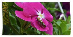 Hand Towel featuring the photograph Ailanthus Webworm Moth Visiting My Garden by Verana Stark