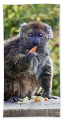 Alaotran Gentle Lemur Hand Towel by Terri Waters