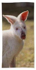 Albino Wallaby Hand Towel