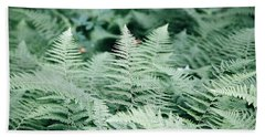 Hand Towel featuring the photograph Algonquin Ferns by David Porteus