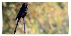 Hand Towel featuring the photograph Alone - Black Drongo  by Ramabhadran Thirupattur