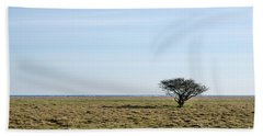 Alone Tree At A Coastal Grassland Hand Towel