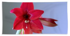 Amaryllis 2 Bath Towel