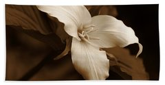 Amber Trillium Wild Flower Bath Towel