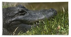 American Alligator Closeup Bath Towel by David Millenheft