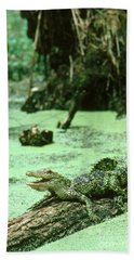 American Alligator Hand Towel by Gregory G. Dimijian, M.D.