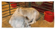 Hand Towel featuring the photograph American Brahman Heifer by Connie Fox
