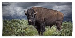American Buffalo Or Bison In Yellowstone Hand Towel