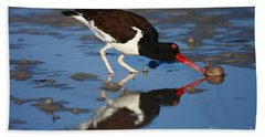 Bath Towel featuring the photograph American Oystercatcher Mirror by John F Tsumas