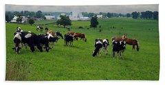 Amish Pastureland  Bath Towel
