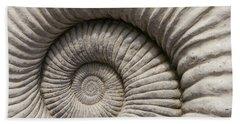 Ammonites Fossil Shell Hand Towel