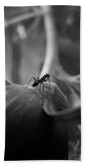 Bath Towel featuring the photograph An Ant's Life by Barbara St Jean