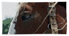 An Old Friend Hand Towel by Yvonne Wright