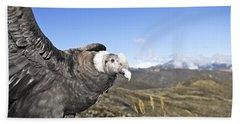 Andean Condor Hand Towel