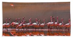 Andean Flamingoes Hand Towel