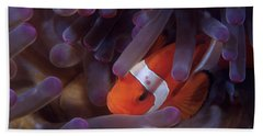 Anemonefish Hand Towel