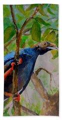 Angel Bird Of  North Moluccas Bath Towel
