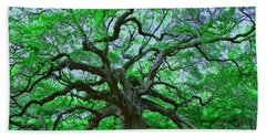 Angel Oak Hand Towel by Allen Beatty