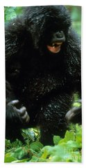 Angry Mountain Gorilla Hand Towel by Art Wolfe