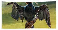 Anhinga Drying His Wings Hand Towel