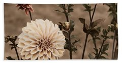 Hand Towel featuring the photograph Antiqued Dahlias by Jeanette C Landstrom