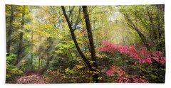 Appalachian Mountain Trail Hand Towel