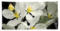 Hand Towel featuring the photograph Apple Blossoms by Alana Ranney
