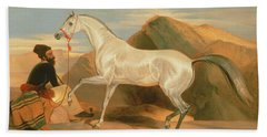 Arab Stallion Bath Towel