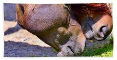 Arabian Horses Bath Towel