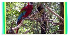 Bath Towel featuring the photograph Artistic Wild Hawaiian Parrot by Joseph Baril
